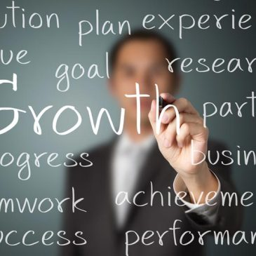 Where to Start When Your Business Growth Stops